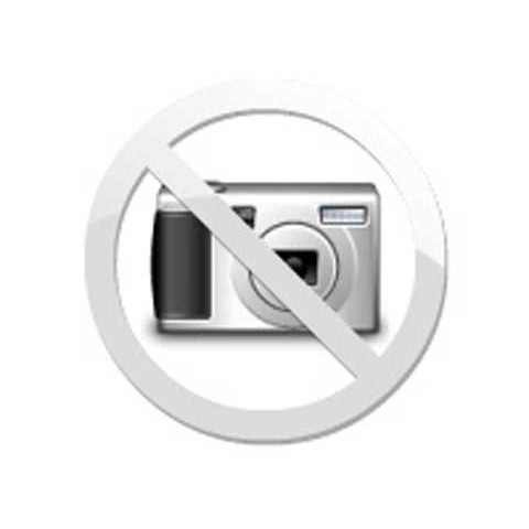 Máquina Kirlian-mod.k4-110/220V-automático